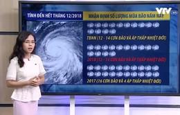 Bão, áp thấp nhiệt đới xuất hiện nhiều nhất vào tháng nào năm nay?