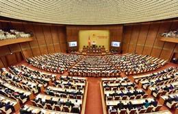 TRỰC TIẾP: Bộ trưởng Bộ LĐ-TB&XH Đào Ngọc Dung trả lời chất vấn