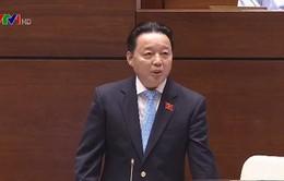 ĐBQH ấn tượng với phần trả lời chất vấn của Bộ trưởng Bộ TN-MT