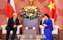 Việt Nam luôn coi trọng phát triển quan hệ với Czech
