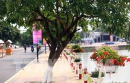 Việt Nam sẽ mở tuyến du lịch mới