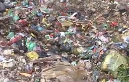 Lạm dụng túi nilon - Hiểm họa đối với sức khỏe và môi trường