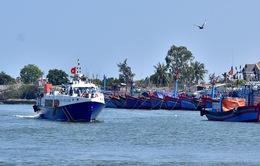 Đề án cấm, hạn chế khai thác thuỷ sản có thời hạn ở vùng biển Việt Nam