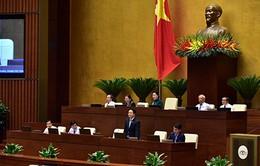 """Nguy cơ Việt Nam thành """"bãi rác công nghiệp"""": Bộ trưởng Bộ TN&MT nói gì?"""