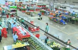 Liên kết nông hộ để xây dựng nông nghiệp thông minh tại Việt Nam