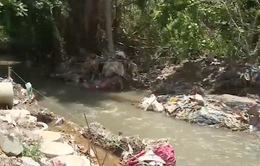 """Đồng Nai: Nhiều dòng suối đang bị """"bức tử"""""""