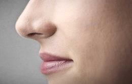 Chiếc mũi thính giúp ích cho đời sống tình dục