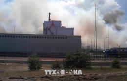 Cháy rừng gần nhà máy điện hạt nhân Chernobyl