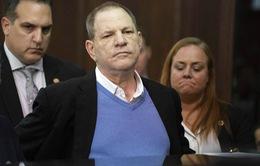 Harvey Weinstein chối bỏ mọi cáo buộc tội danh hiếp dâm