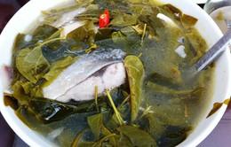Thưởng thức món canh cá lá giang ngon khó cưỡng