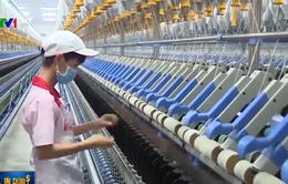 World Bank nâng dự báo tăng trưởng kinh tế Việt Nam