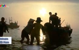22 tác phẩm đặc sắc tham gia Liên hoan phim Tài liệu châu Âu - Việt Nam lần thứ 9