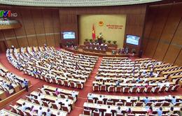 Phiên chất vấn tại Kỳ họp thứ 5 Quốc hội khóa XIV: Cử tri ấn tượng về tinh thần đổi mới chất vấn