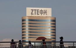 """Công ty sản xuất linh kiện điện thoại ZTE của Trung Quốc """"sống sót"""" sau thỏa thuận mới nhất với Chính phủ Mỹ"""