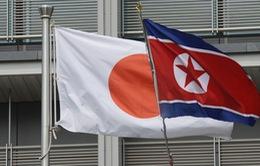 Nhật Bản xem xét đàm phán với Triều Tiên sau hội nghị Mỹ - Triều