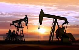 Saudi Arabia sẽ tăng sản lượng dầu mỏ thêm 2 triệu thùng