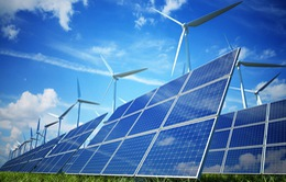 Ninh Thuận biến bất lợi thành lợi thế phát triển năng lượng tái tạo
