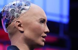 Công dân robot đầu tiên trên thế giới Sophia sắp đến Việt Nam