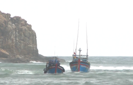 Tăng cường chế tài với tàu cá không bật định vị