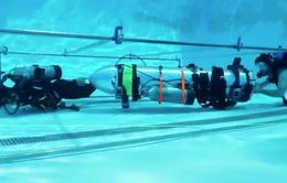 Elon Musk: Tàu ngầm mini giải cứu đội bóng nhí Thái Lan đã sẵn sàng