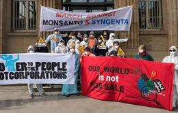 Monsanto bị kiện vì sản xuất thuốc diệt cỏ bằng chất gây ung thư