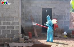 Đắk Lắk chủ động phòng chống cúm A/H1N1