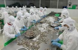 Australia áp dụng quy định mới về nhập khẩu tôm