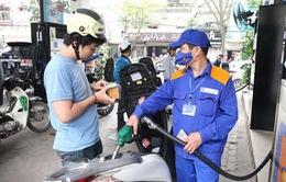Cần có lộ trình tăng thuế môi trường đối với xăng dầu