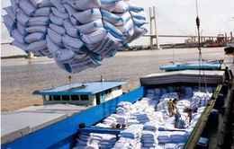 Mạnh dạn bãi bỏ quy định, gỡ khó cho gạo Việt