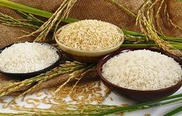 Nhiều doanh nghiệp chưa quan tâm đến thương hiệu gạo Việt Nam