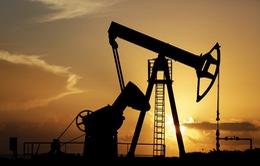 Giá dầu thế giới tăng 4 phiên liên tiếp