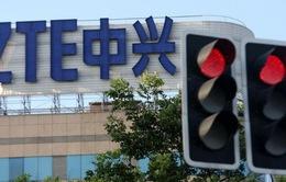 Mỹ sắp dỡ bỏ lệnh cấm tập đoàn ZTE của Trung Quốc