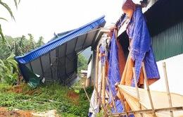 Gần 200 căn nhà tại ĐBSCL bị thiệt hại do lốc xoáy