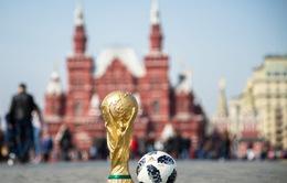 Tiền thưởng tại World Cup 2018 được phân chia như thế nào?