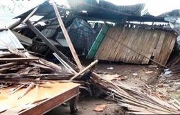 Hàng trăm ngôi nhà bị hư hỏng do dông lốc tại ĐBSCL