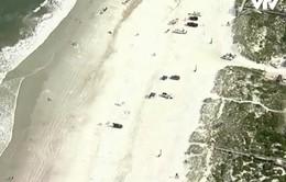 Mỹ: Hai người bị cá mập tấn công, bãi biển đóng cửa
