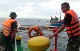 Đà Nẵng: Kịp thời cứu 8 thuyền viên gặp nạn trên biển