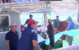 Chậm hỗ trợ ngư dân mua bảo hiểm tàu cá