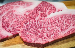 Du lịch Nhật Bản, bạn đừng quên thử những món ngon này