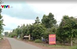 Đồng Nai: Thanh tra xử lý tình trạng phân lô bán nền và xây dựng trái phép