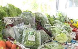 Lâm Đồng tập trung phát triển nông nghiệp hữu cơ trên rau quả và cây chè