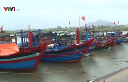 Ngư dân có ý thức cao trong việc phòng tránh bão số 3
