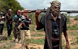 Nigeria bắt giữ 22 chiến binh Boko Haram