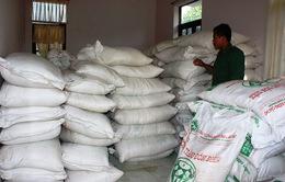 Gian nan cuộc chiến chống buôn lậu đường