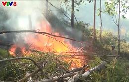 Hà Tĩnh liên tiếp xảy ra cháy rừng
