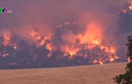 Bang California (Mỹ) ban bố lệnh sơ tán sau hàng loạt vụ cháy rừng