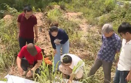 Khảo sát đánh giá nguyên nhân gây sạt lở tại Lai Châu
