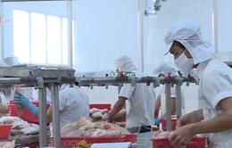 Tăng trưởng Việt Nam đạt 6,9% trong năm 2018