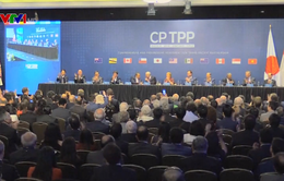 Singapore trở thành nước thứ 3 phê chuẩn CPTPP