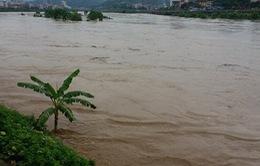 Lào Cai: Bị nước ngập chia cắt, người dân liều mình dùng bè vượt lũ